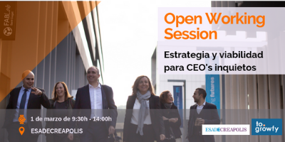 "Open Working Session ""Estrategia y viabilidad"" para CEO's inquietos"