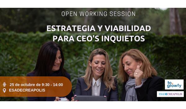 """Open Working Session """"Estrategia y viabilidad"""" para CEO's inquietos"""